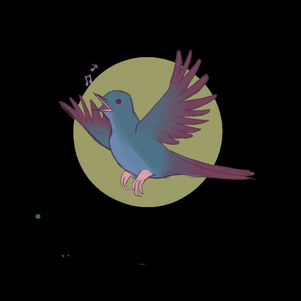 Tous les Oiseaux d'Europe | Tlode
